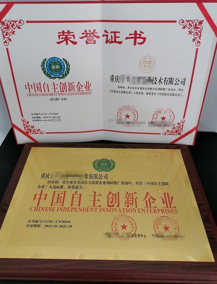文山枕芯公司荣誉证书范本