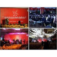 河南鄭州禮儀慶典演出策劃定制